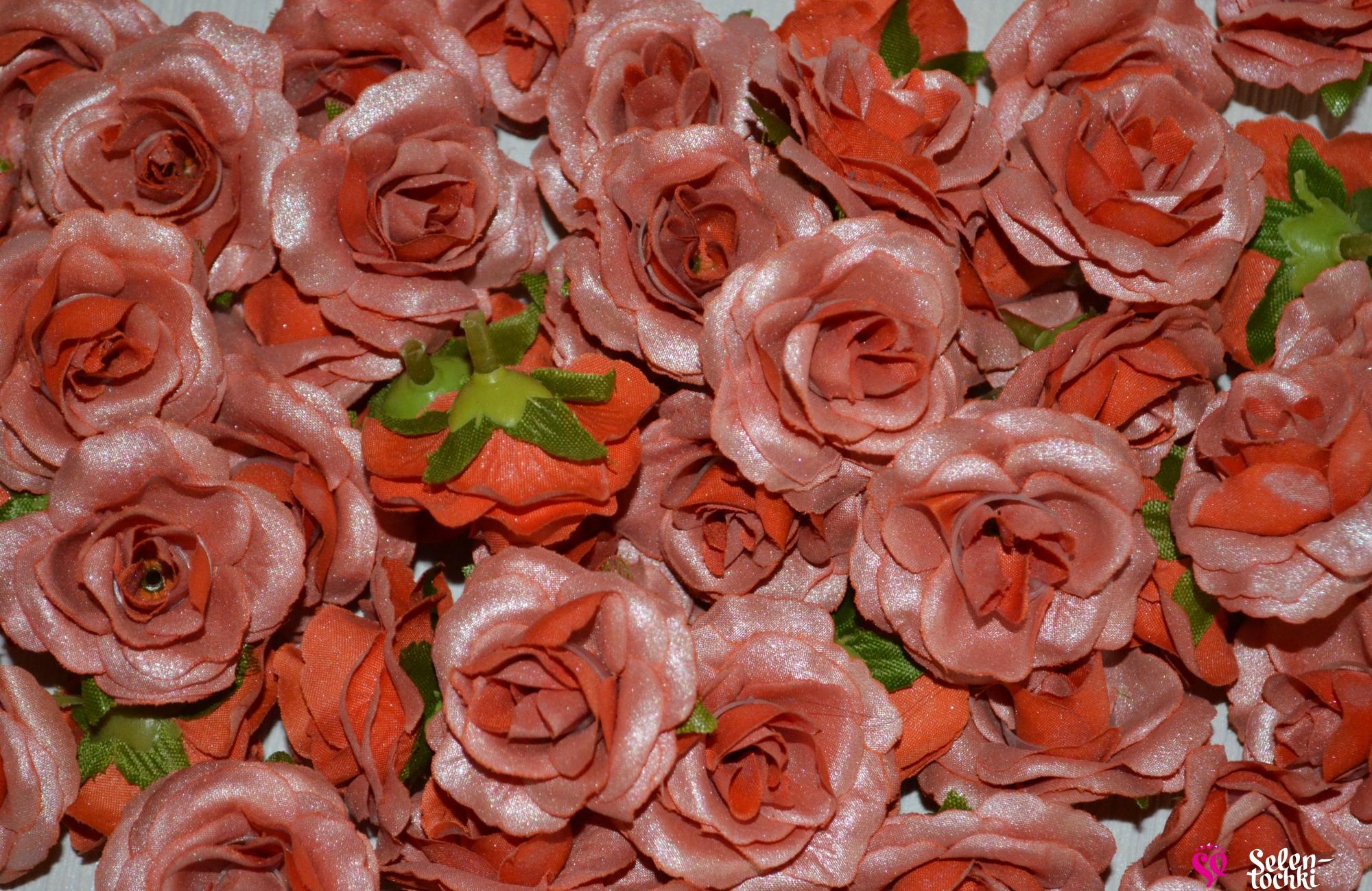 Розы оптом с доставкой по беларуси, цветов первоуральск